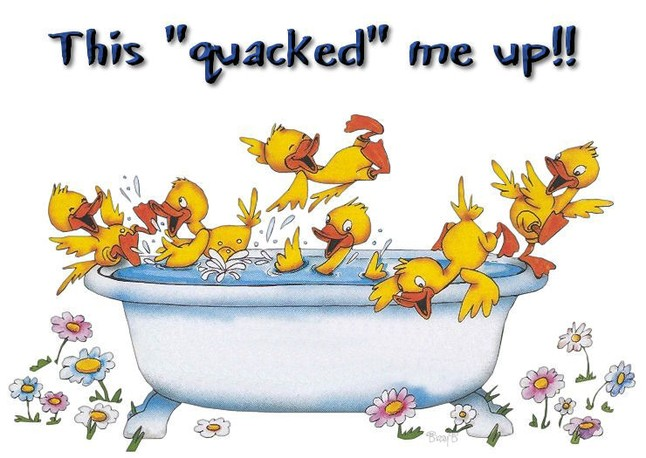 ducks in a bath