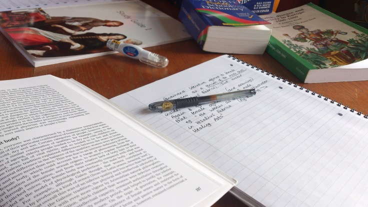 View from the PamCam - Studying