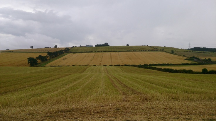 Flodden Battlefield looking at Branxton Hill