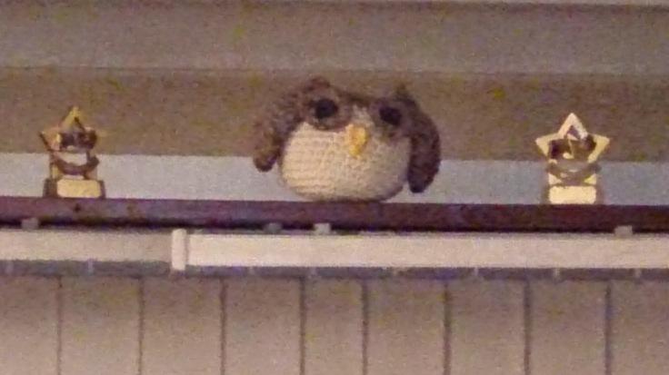 Home Owl