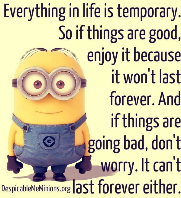 Minions Quote Mushy Cloud