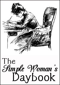 8598a-simple-woman-daybook-large