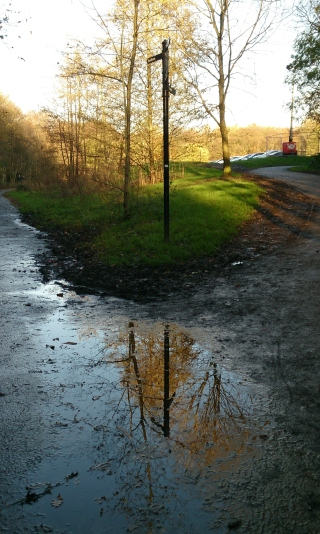 Reflection on the path
